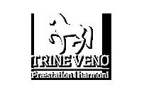 trinevenoe-logo